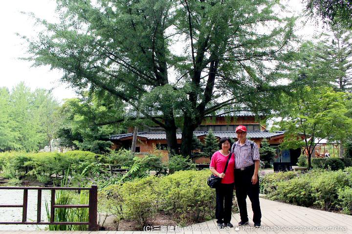 韓國南怡島