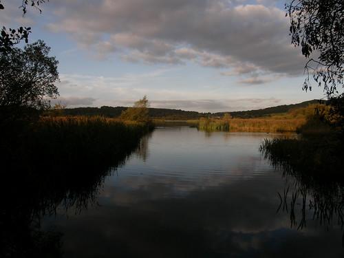 Leighton Moss View
