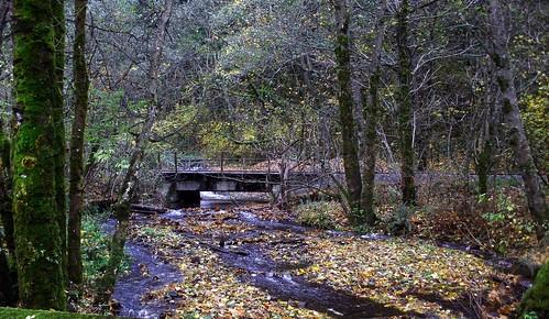 railroad bridge near hartman pond