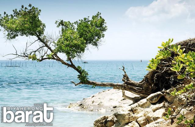 rocky shoreline in pagbilao quezon