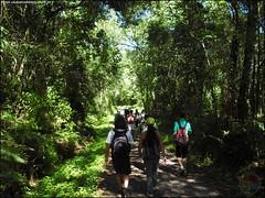 360ª Trilha Cachoeiras Três Quedas e Véu de Noiva - Santa Maria RS_010