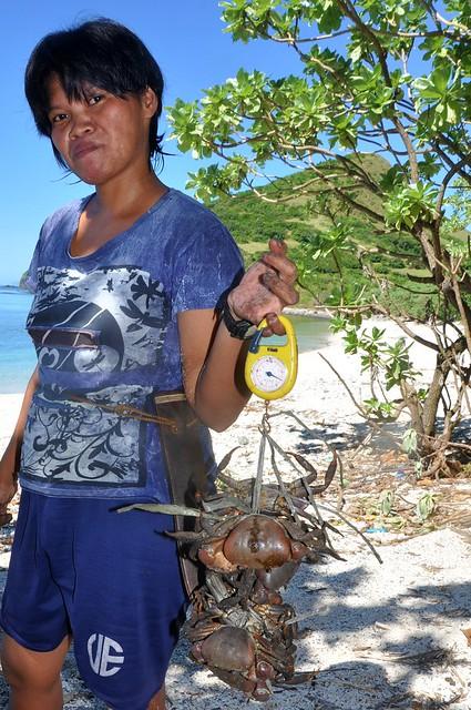 Maya, the island settler