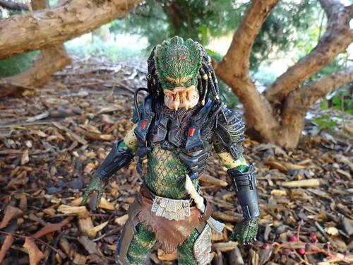 The Lost Predator
