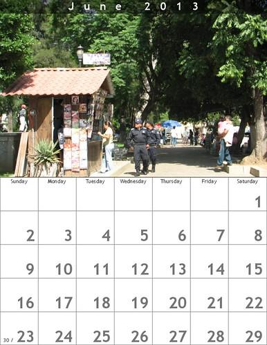 June 2013 Calendar (Oaxaca Trees)