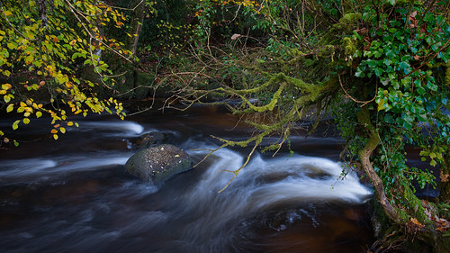 River Dart at Dartmeet