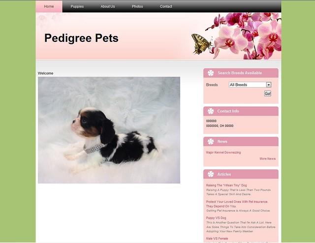 Pedigree Pets-1