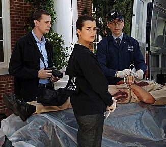 McGee, Ziva and Palmer