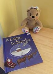 Reading Matters teddy