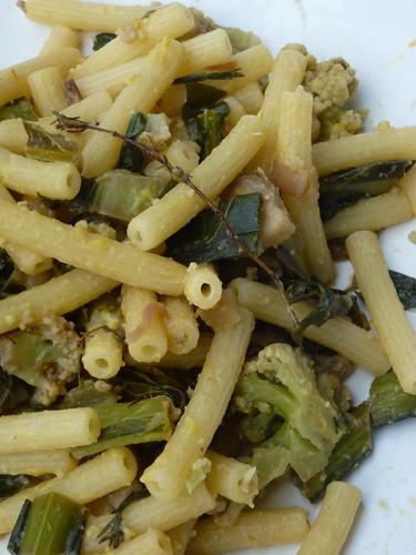 Cavolo Fiolaro - Fiolaro Kale
