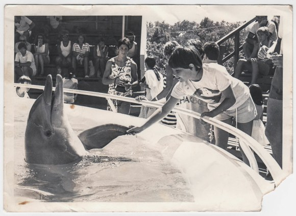 Greg Gurney at the Pet Porpoise Pool - Coffs Harbour