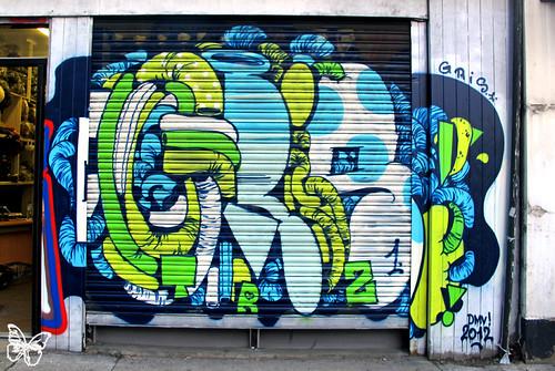 Gris1