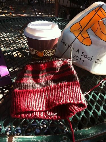 Philz, knitting, sun