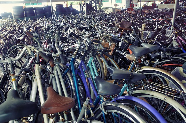 A Sea of Bicycles