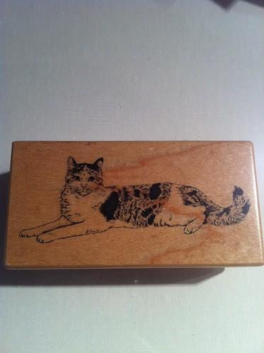 RS - cat