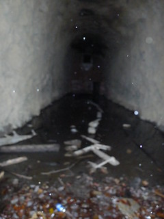 Stumphouse Tunnel-001