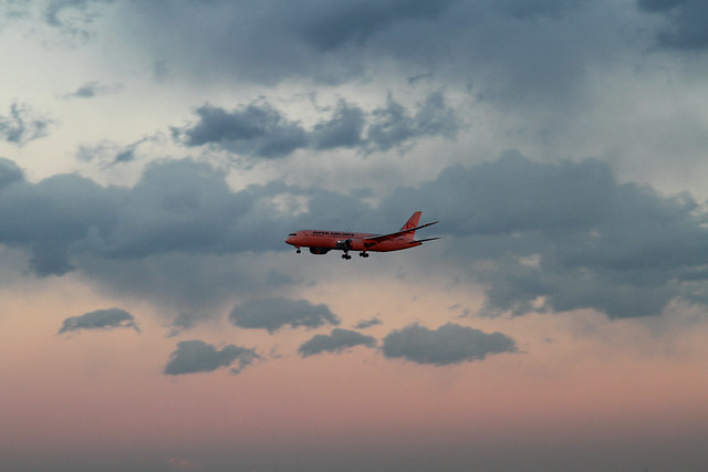 JAL B787-8 Dreamliner (JA826J)