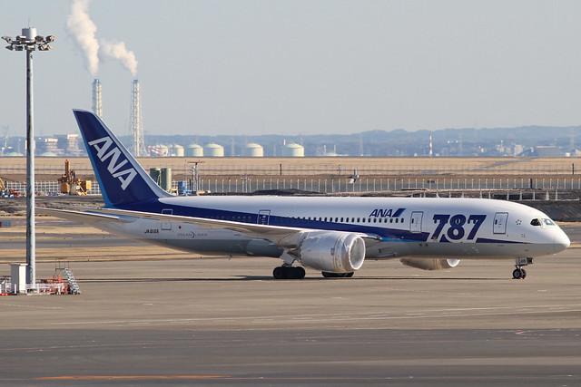 ANA B787-8(JA816A)