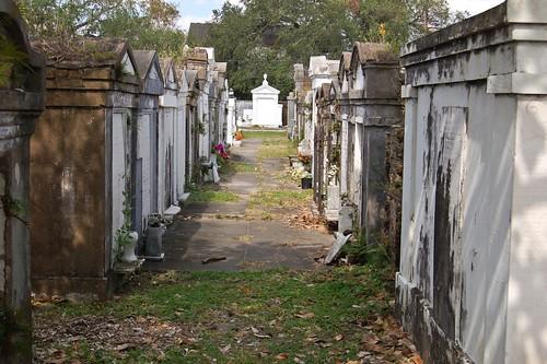 Walking Around the Cemetery