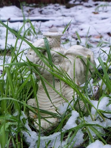Elephant in Snow