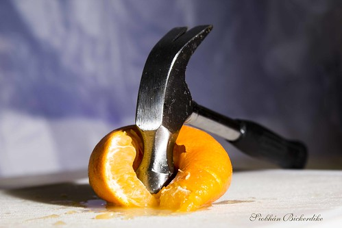 Orange Squash by Siobhan Bickerdike