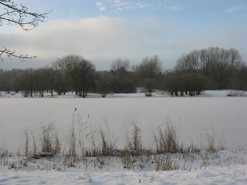 Dezember-Teich