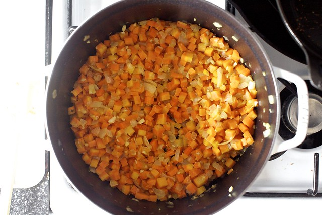 carrot, onion, garlic, spices, browning
