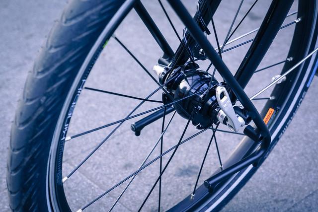 Tern visit 2, Taiwan Bicycle Bloggers Tour 2012