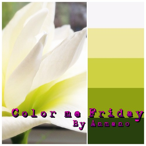 Color me Friday by AnnaMaria Nordstrom