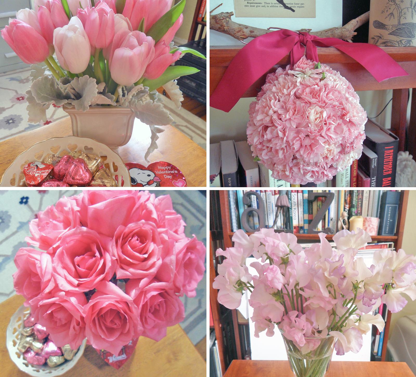 february-flowers
