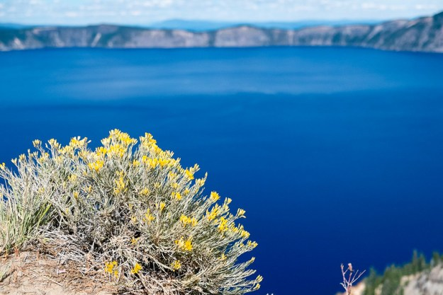 Blue and yellow. Crater Lake
