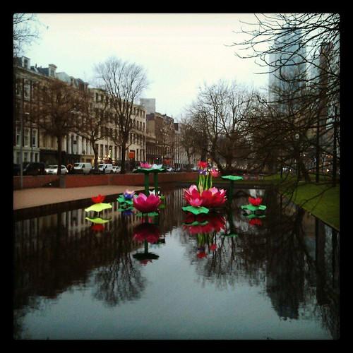 Chinese flowers #rotterdam