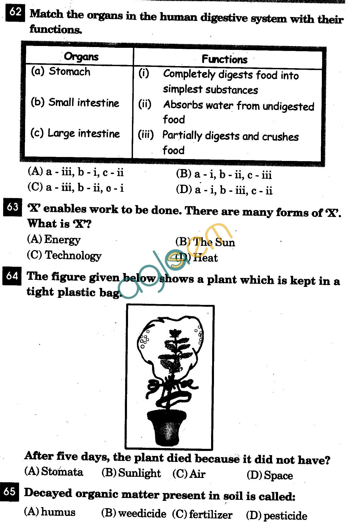 NSTSE 2011 Solved Question Paper for Class IV