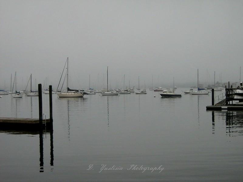 solemn-sea