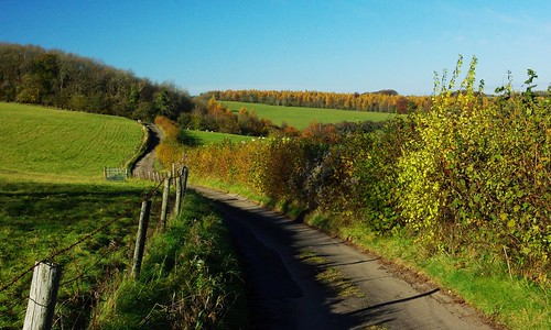 20121111-19_Cotswold Lane + Autumn Colours by gary.hadden