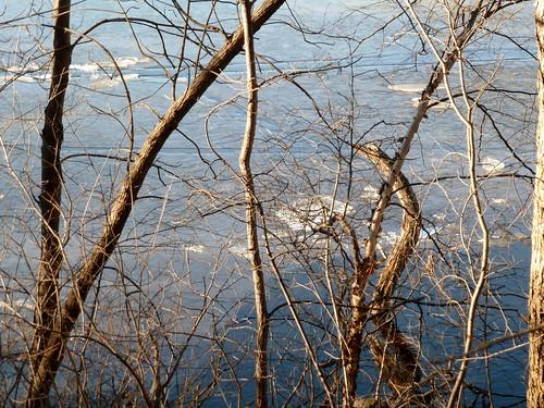 Ice along shore