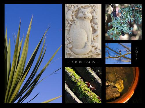0596, 2011, Garden, Spring, i
