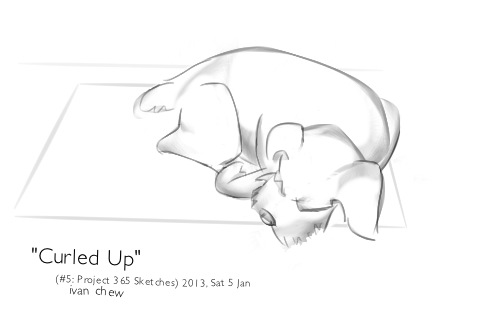 """Curled Up"" (#5: Project 365 Sketches)"