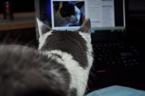 Aremid reads about himself on my blog (3)