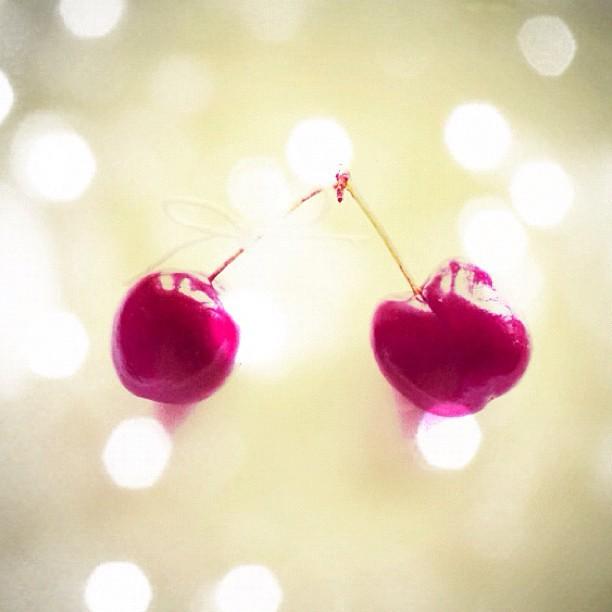 #cherries #cherry #bowtie #instadaily #instadaily #pretty #picoftheday #yummie #vintage