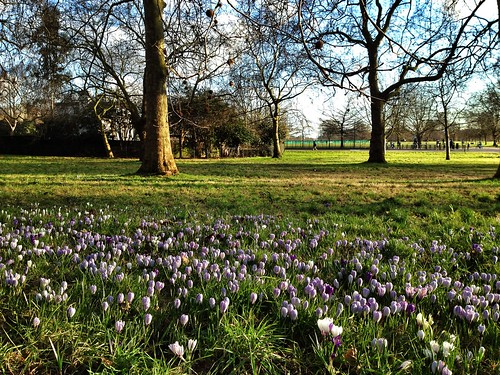 Spring has sprung at Hyde Park, London