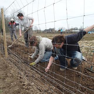 300 mètres haies : planteurs en cage