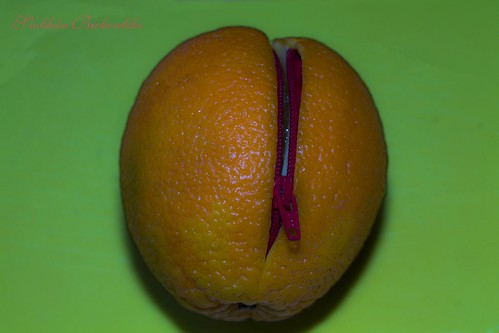 Easy Peel Orange by Siobhan Bickerdike