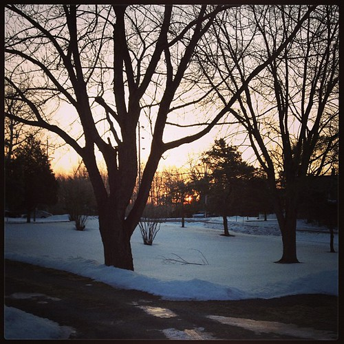 Feb 26 - quiet {the quiet beginning of a new day} #fmsphotoaday