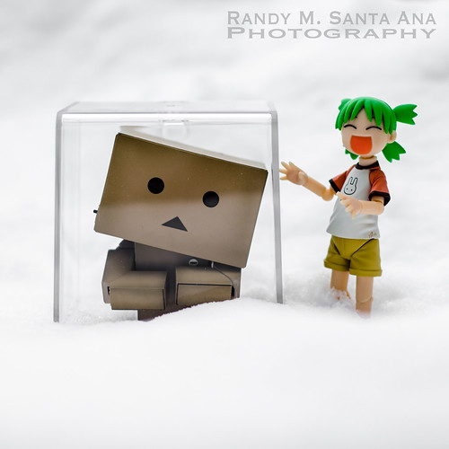 Danbo Ice Cubed.