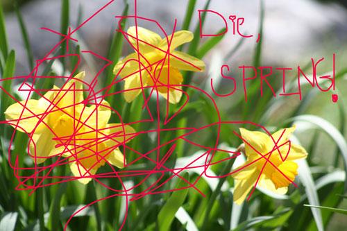 die, spring