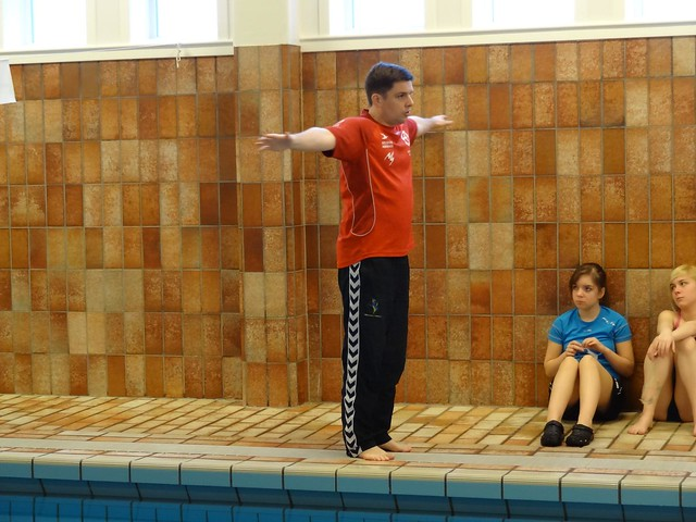 Me trying to explain something about swimming