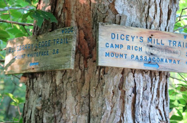 Blueberry Ledge Trail Sign