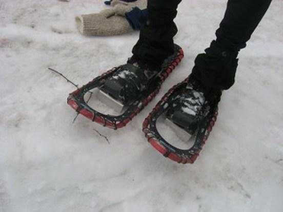 snowshoe manufacturers: Sherpa snowshoes on Mount Greylock