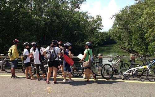 Otter rail guides at Pasir Ris Park