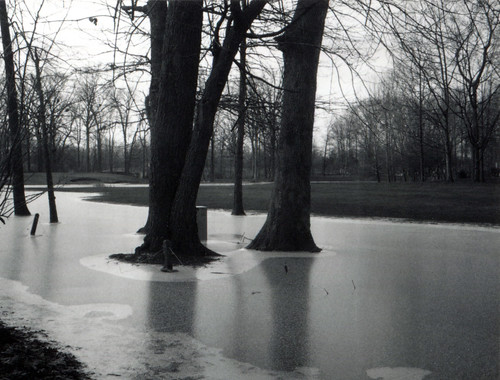 Frozen Golf Course
